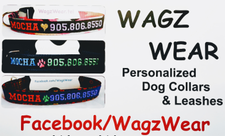 Wagz Wear ID Collars