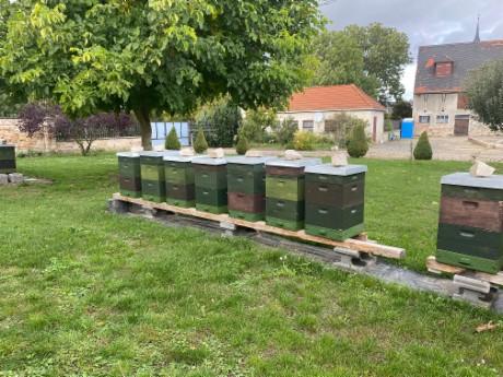 Bienenstand - Saalehonig